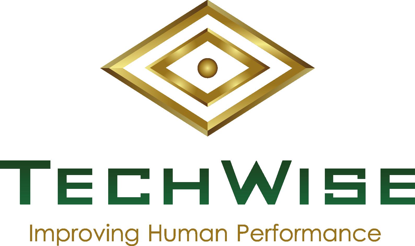 TechWise Global
