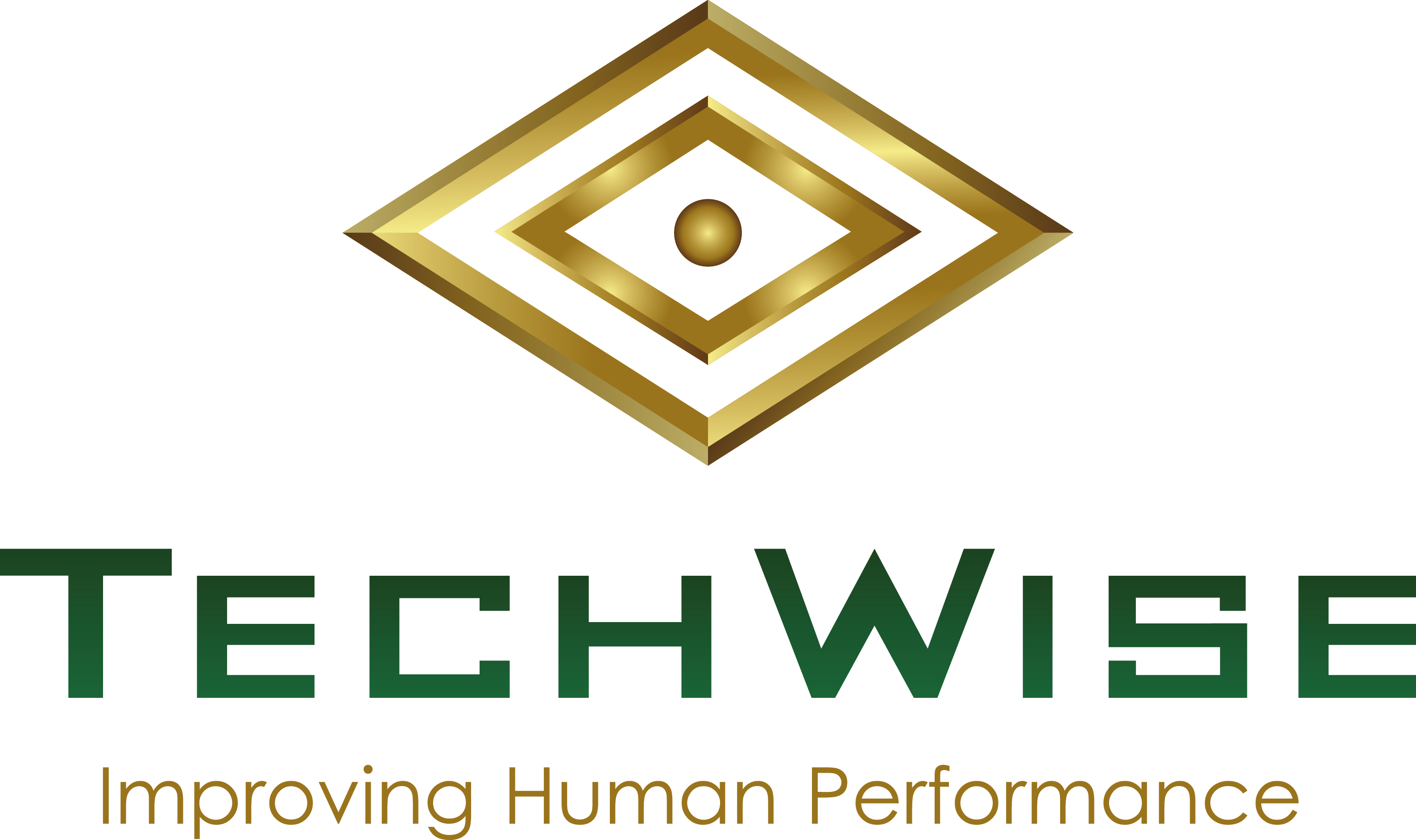 TechWise Global